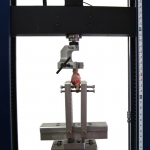 Axial-torsion testing of animal tissue